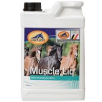 Cavalor Muscle Liq bij gevoelige spieren