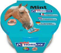 Horselyx Mint mini liksteen voor paarden