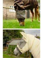 Ivanhoe Horse Equipment Hoofdkap