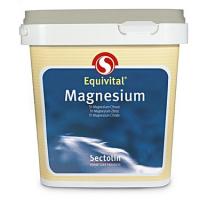 sectolin equivital magnesium |stalapotheek.nl